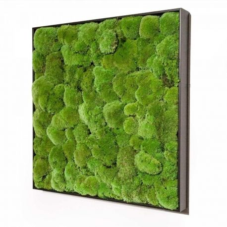 27 best eco design and refurbishment images on Pinterest - wandabschlussleiste küche edelstahl