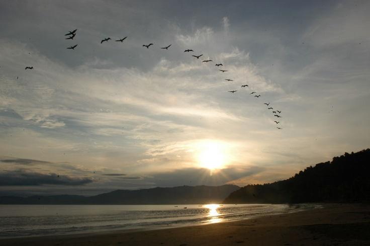 Aves Migratorias! Destino Especial para estos viajes de avistamiento