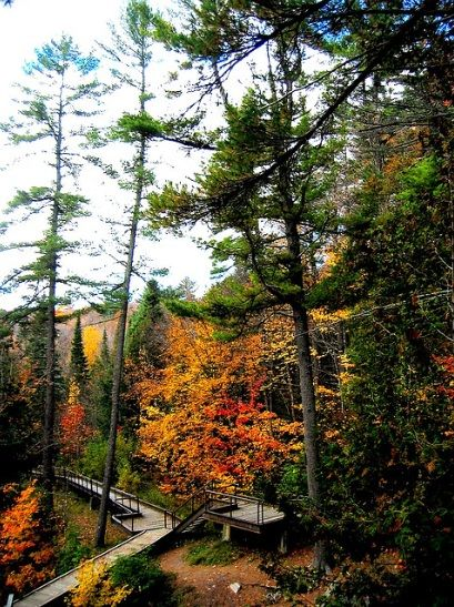 Hiawatha hiking path – Sault Ste. Marie, Ontario – Kattaka.  I think this place may be worth the little extra drive, while visiting the Adirondacks.