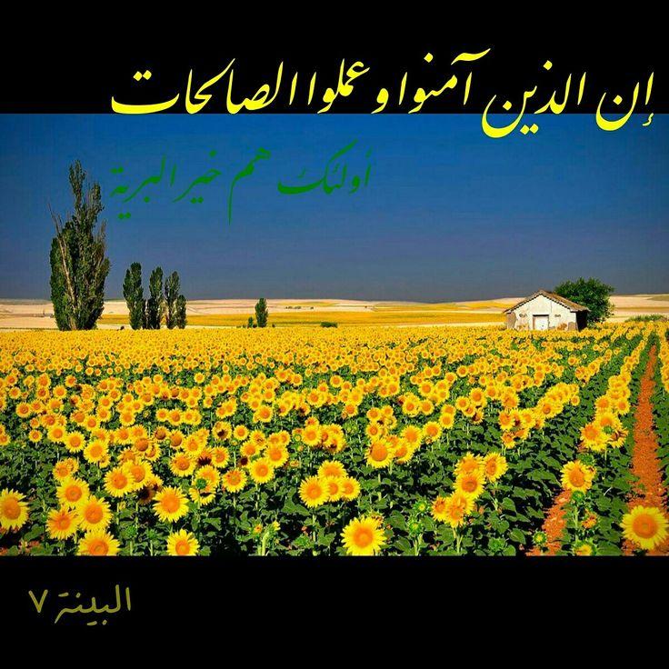 Bariyah