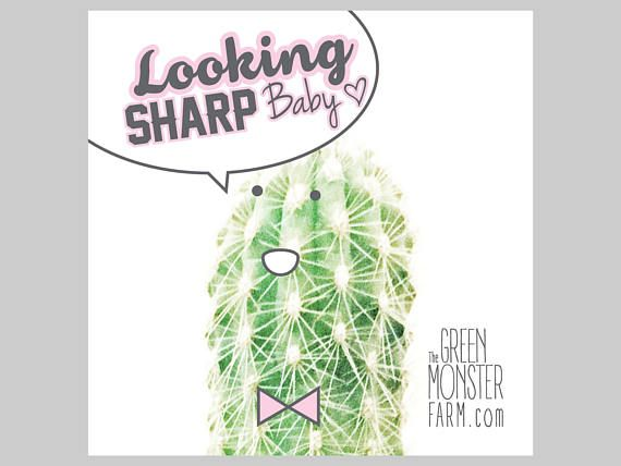 Looking SHARP Baby Cactus ECO stickers 2x2 with    https://www.etsy.com/listing/596878951/looking-sharp-baby-cactus-eco-stickers?ref=pr_shop
