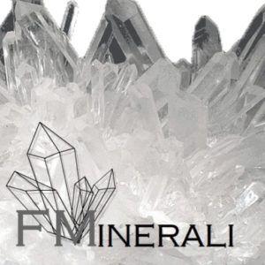 Home - Logo FMinerali