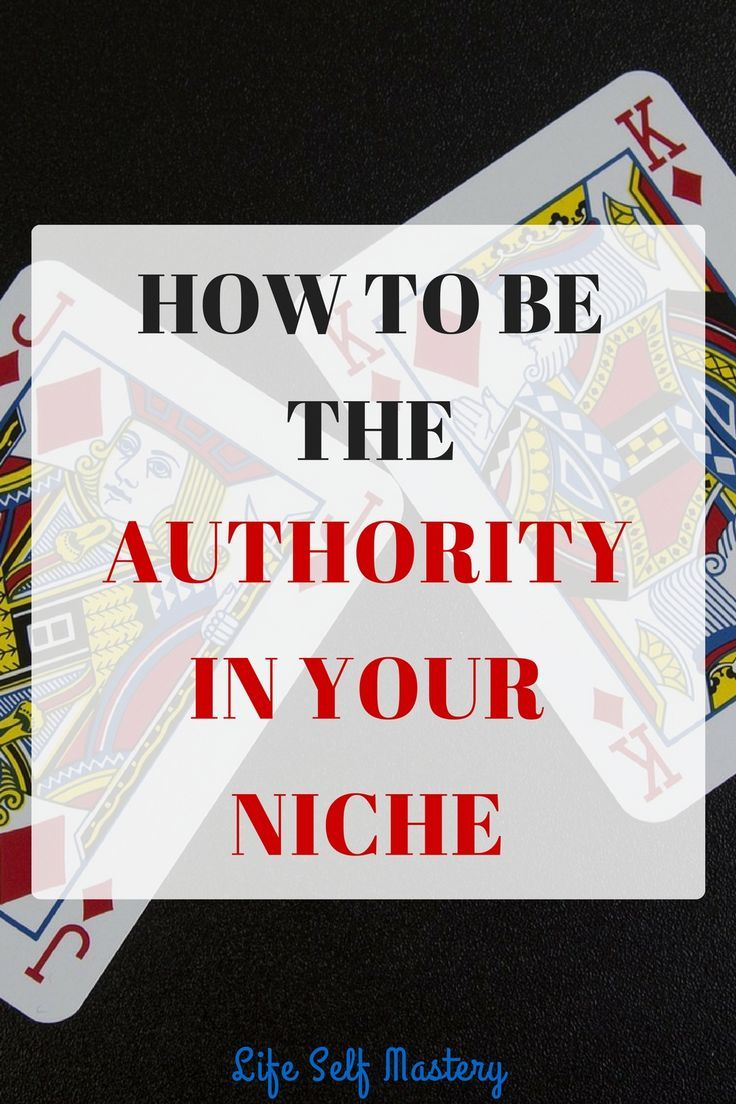 How to be the authority in your niche if you are just starting out! Click here to know more!