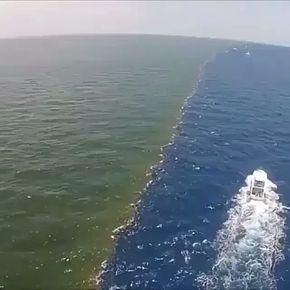 """Bismillahirrahmanirrahim. """"Birbirleriyle kavuşmak üzere iki denizi salıverdi"""" (Rahman /19) """"Fakat aralarında bir engel vardır, birbirlerine Geçip karışmıyorlar."""" (Rahman Suresi, Ayet 20)"""