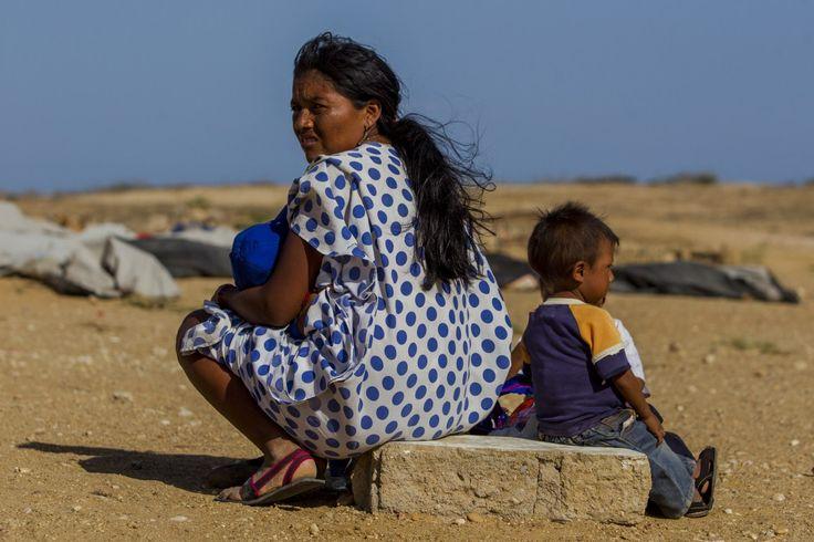 Cifras de la FAO sobre la mala nutrición en América Latina – Latinoamérica – Internacional