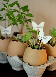 eggshell planters: Growing Plants, Kids Projects, Gift Ideas, Eggshell Planters, Cute Ideas, Eggs Shells, Plants Herbs, Herbs Gardens,  Flowerpot
