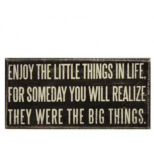 enjoy the little things: Life Quotes, Words Of Wisdom, Little Things, Remember This, Big Things, True Words, Truths, So True, True Stories