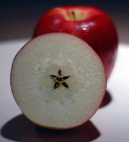 ✯ The promise of The Goddess contained within the heart of the Apple :: Known as the sacred fruit to the Goddess. The sacred fruit to the Isle of Avalon. If you cut an apple horizontally through it's center, you will see the 5 pointed star formed by its seeds. A wiccan food that is used in love, healing, garden magic, and immortality.✯