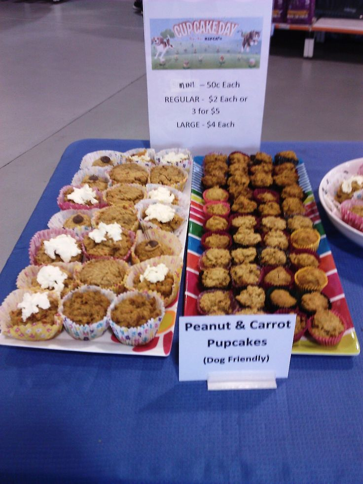 Cakes for dogs at PETstock Toowoomba