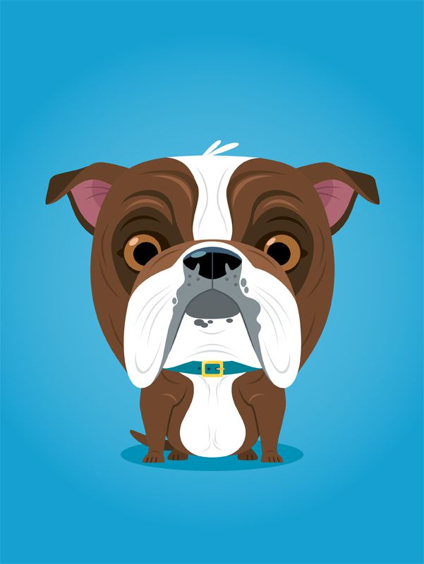 #richwake #newdivision #illustration #cartoon #flatgraphic #character #dog #bulldog