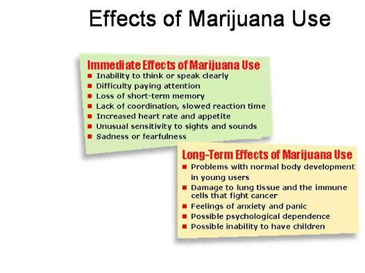 the effects of thc spice and