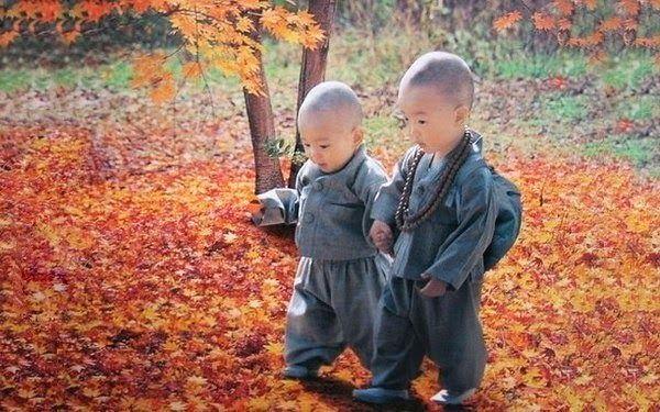 Тайны психологии: Основные правила тибетского воспитания