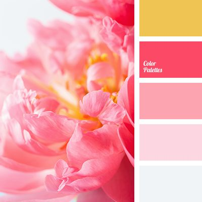 bright pink, color combination for spring, color of flamingo, color of flamingo feathers, color of orange, coral pink, crimson, delicate pink, gray-blue, shades of pink, warm orange.