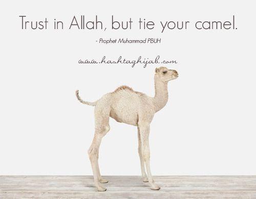 #Trust #Allah