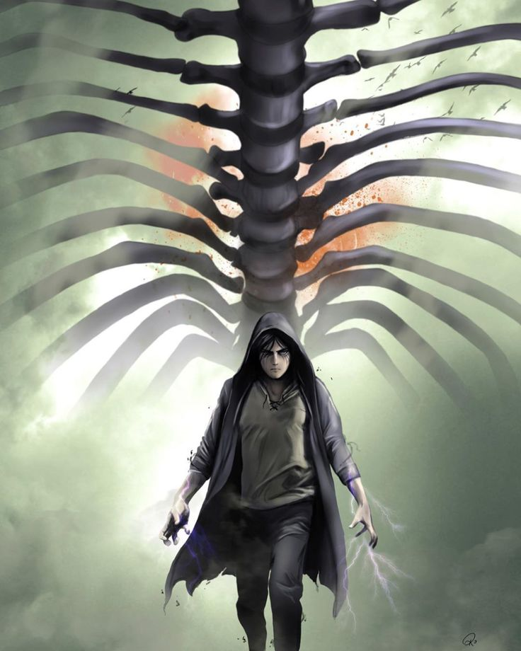 Eren Jaeger - Shingeki no Kyojin | Attack on titan anime ...