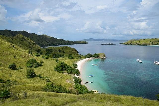 The Pink Beach of Komodo Island. On my Bucket list.  #Bucketlist #Travel #Indonesia #Komodo #Island #Wild #Wanderlust