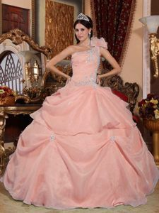 Strapless Organza Baby Pink Dresses for Quinceanera with Appliques for Cheap - $225.69