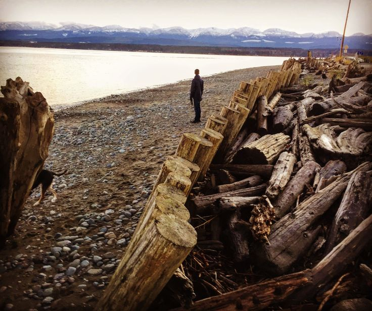 Goose Spit, a beautiful beach with a ton of drift wood and epic mountain sunset views 🌟
