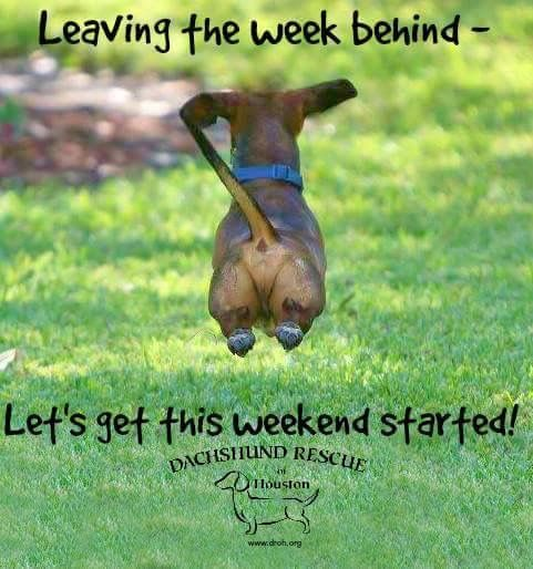 Wooh!!! Almost there weekend! Here I come! | See more fun videos here: http://gwyl.io/