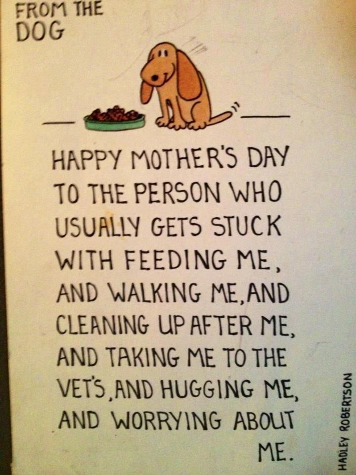 This is for all dog mom's!  ♥ Happy Mothers Day!