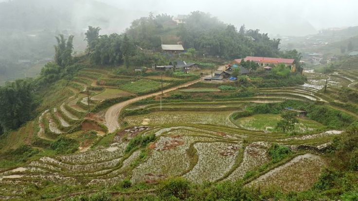 Breathtaking scenery; Sapa's rice terraces | lettucetakatrip.com