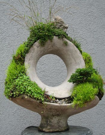 Les 171 meilleures images à propos de Bonsai sur Pinterest Arbres - mini jardin japonais d interieur