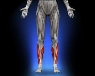 Fortaleça o tibial e evite lesão