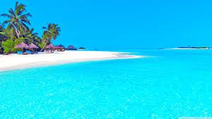 Image result for blue turquoise beaches crystal clear