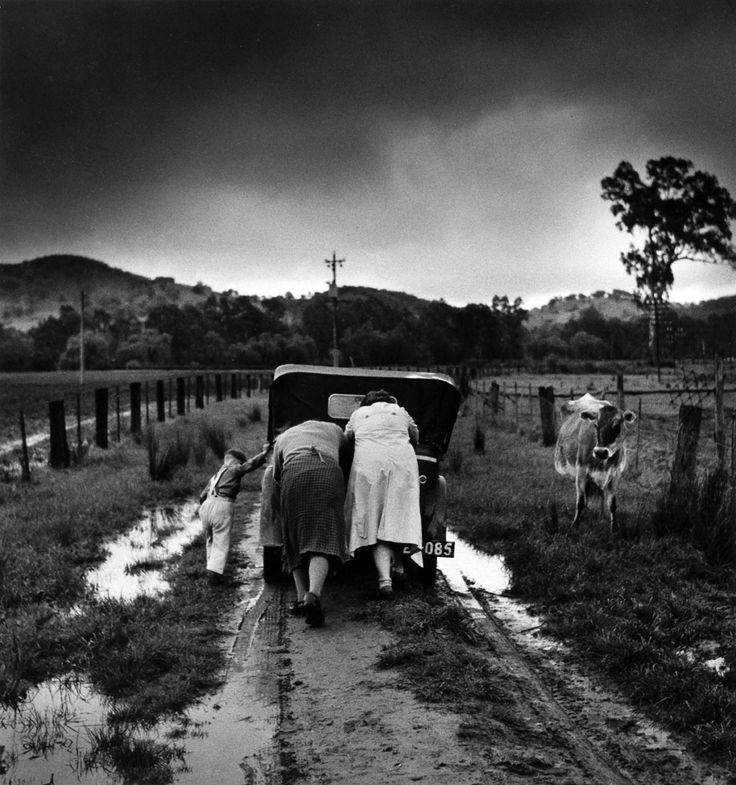 Jeff Carter  Australia, born 1928  Tobacco Road  1956, Ovens Valley, Victoria  gelatin silver photograph