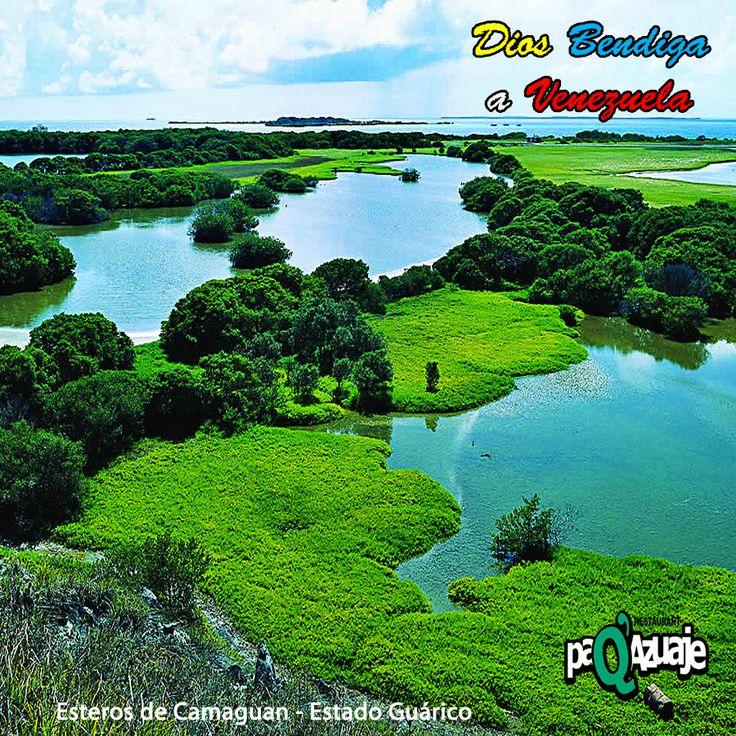 """Para tener éxito, debes tener una enorme perseverancia, una enorme voluntad. """"Voy a beber el océano"""", dice el alma perseverante.  Swami Vivekananda.  Buenos días apreciados amigos. Reciban un cordial saludo de buena voluntad  ¡Feliz Jueves!  #PaQAzuaje #FelizDía #DiosBendigaVenezuela #FelizJueves #Venezuela"""
