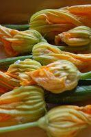 Courgettebloemen zien er niet alleen prachtig uit, ze zijn ook nog eens eetbaar en heerlijk subtiel van smaak. Helaas zijn ze beperkt verkrijgbaar. Op boeren/biologische marktjes heb je de grootste