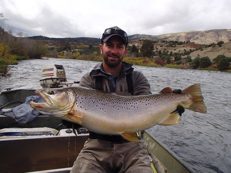 1000 images about where to fish on pinterest fly for Colorado river fly fishing
