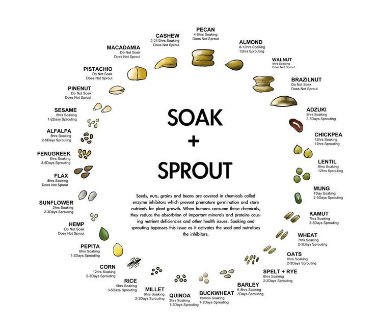 Soak & Sprout Chart for Nuts, Seeds, Grains and Beans - quick reference, good visual
