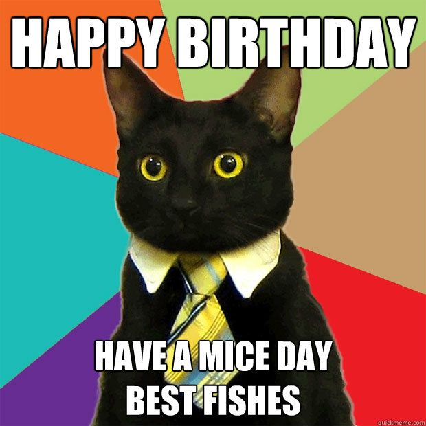 A birthday wish, from a cat. (: