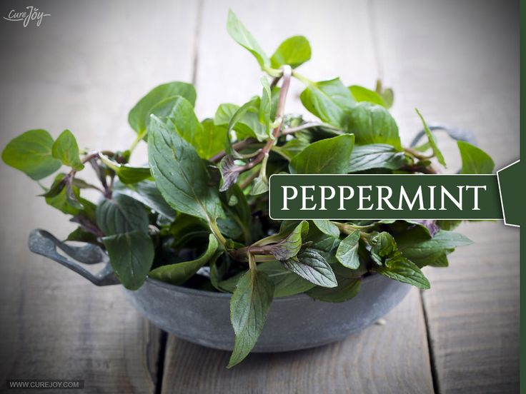 7 Cancer-Fighting Culinary Herbs and Spices. Peppermint has been used for thousands of years as a digestive aid to relieve gas, indigestion, cramps, and diarrhea, irritable bowel syndrome, food poisoning. If your cancer or treatment is causing an upset stomach, try drinking a cup of peppermint tea. It can also soothe a sore throat. it is also sometimes used to relieve the painful mouth sores that can occur from chemotherapy and radiation, or is a key ingredient in treatments for this…