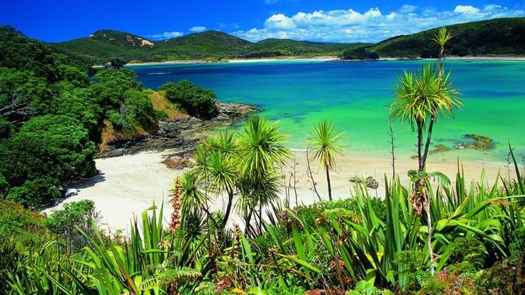 Maitai Bay, Karikari Peninsula
