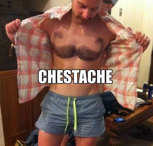 Chestache <---- ewwww and yet better then total furball and funny