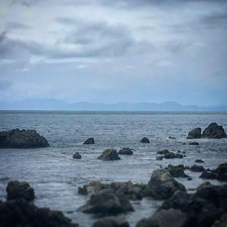 Hello South Island ! La balade de Red Rocks au sud de Wellington donne un joli panorama sur l'île du Sud du pays  Et si t'as de la chance tu peux même y voir des phoques (bon nous on a pas eu de chance) #newzealand #redrockswalk #aotearoa #tourism #sea #oceanwalks #sundaywalk Plus de photos sur notre instagram @alinktoadventures