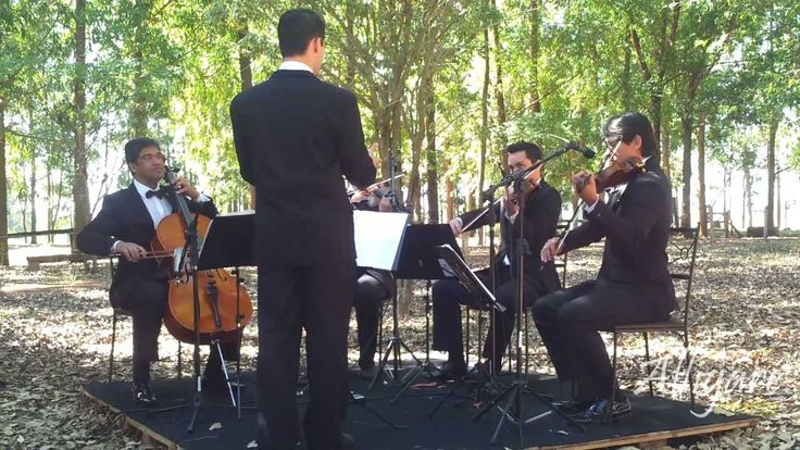 With a little help from my friends - Quarteto de cordas - The Beatles - ...