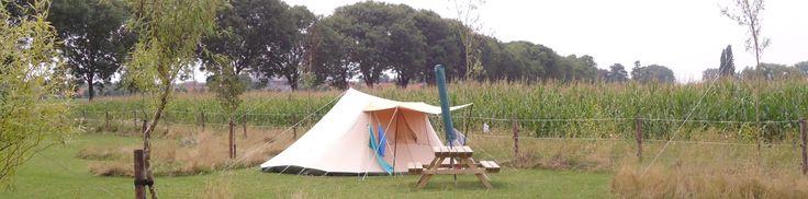 Camping de Maasakker is uitermate geschikt voor een langer verblijf met de tent. We hebben ruime staplaatsen waarbij de rust en ruimte is gegarandeerd.