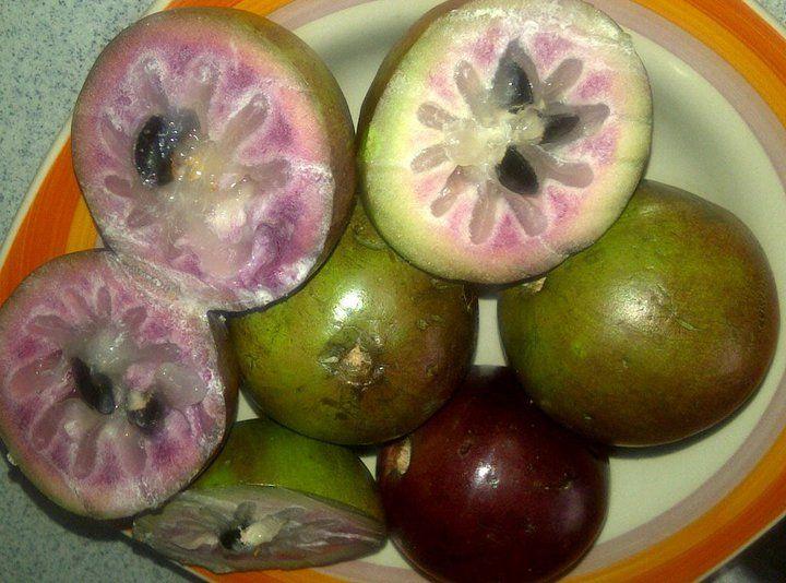 Jamaican star apples Jamaica's Food of Champions