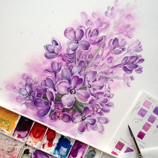 """Magic lilac🔮💜 Для #ботанический_баттл и Юли @juliabarminova #ботанический_баттл_юлия_барминова Смешанная техника: я хотела и я сделала🙈 ну и еще кое-что подправить☺️ как говорит наш с Ирой @100arti преподаватель по рисунку: """"в искусстве надо предаться любви"""". В общем, я предалась!😍😂 #zuevawatercolors #inspiring_watercolors #watercolorflowers #watercolor #waterblog #акварель #акварельныецветы #сирень #lilac"""