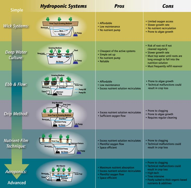 Hydroponic Systems Infographic Which Hydroponics System