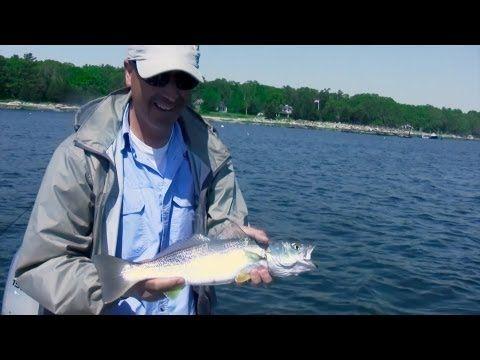 Best 25 saltwater fishing ideas on pinterest fishing for Saltwater fishing basics