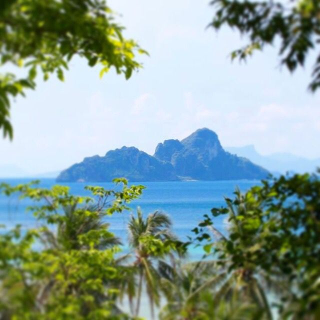 How amazing is this view!! #travel #adventure #thailand #view #paradise #asia #phiphiislands #tropical #explore