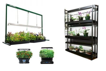 Can I Grow A Garden In My Garage Gardening Hydroponic 400 x 300