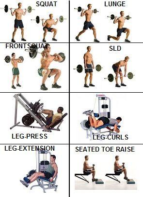 leg day  leg workouts gym leg workout leg workouts for men
