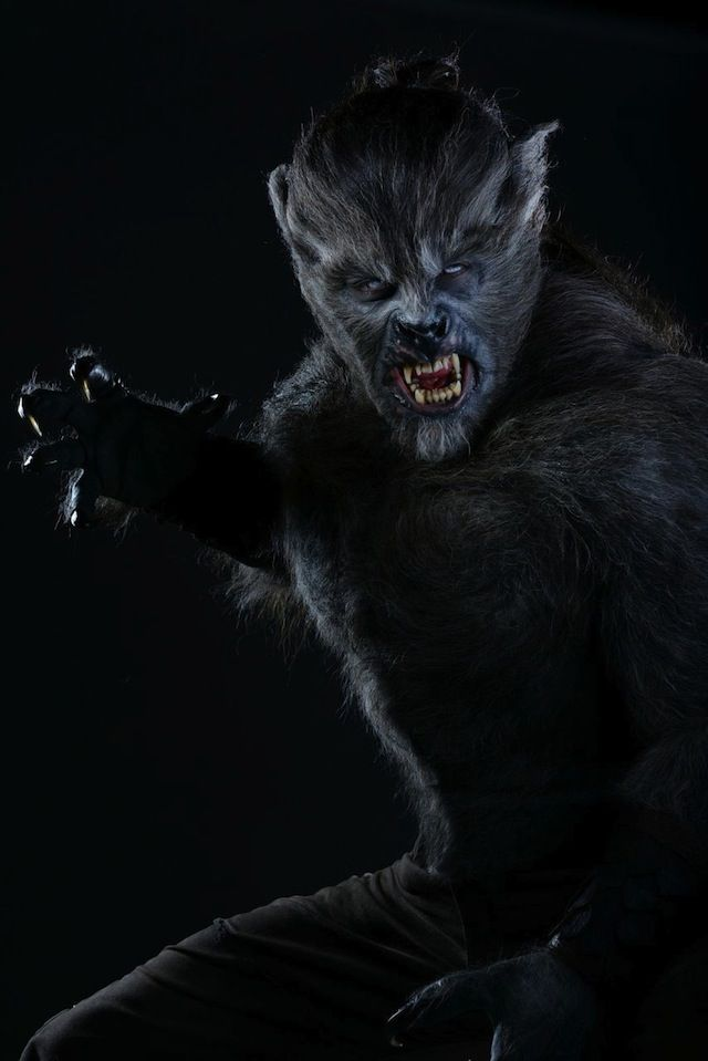 The Werewolf from the series Wolves