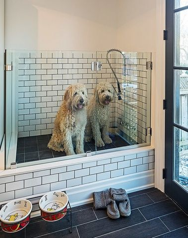 Low enough for large dogs to simply hop inside, and high enough to keep the wash process from becoming back breaking. Swing door creates a nifty holding pen if the need to 'take turns' becomes necessary.