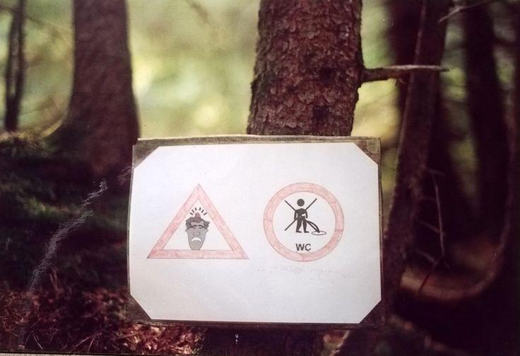 Attenzione: se fai la pipì sotto un pino ti può cadere una pigna in testa! Attention please: if you pee under a pine tree, a pine cone can fall down your head!